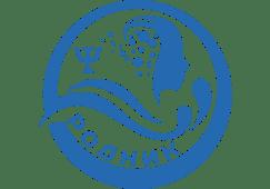 МБУ Центр «Родник»